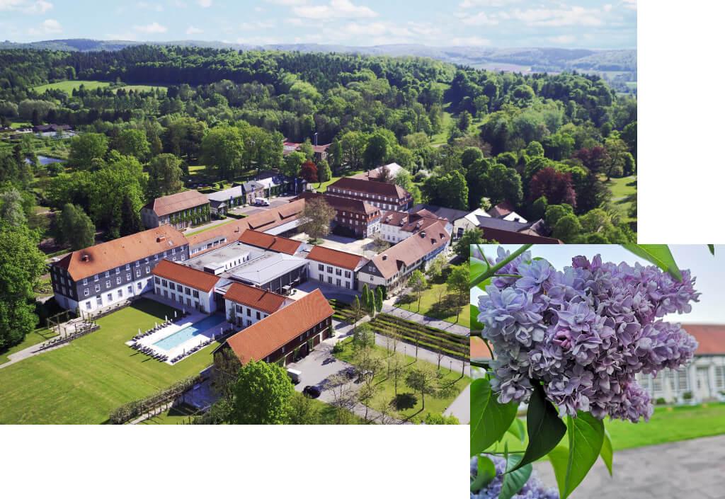 Collage Luftaufnahme Gräflicher Park mit Flieder