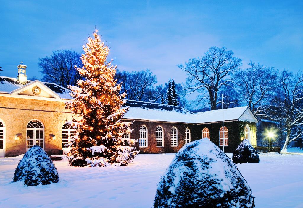 graeflicher-park-schlank-durch-die-weihnachtszeit-winterspaziergang
