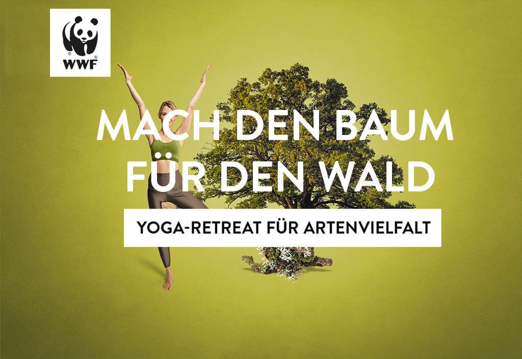 Yoga für Artenvielfalt mit Golight Yoga