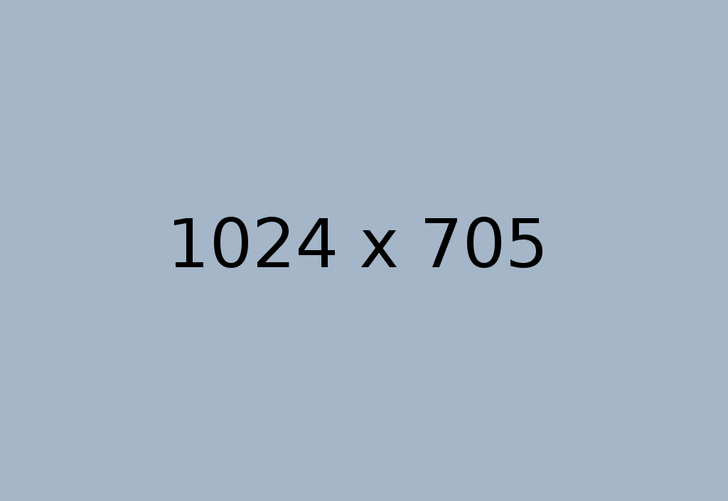 platzhalter1024x705